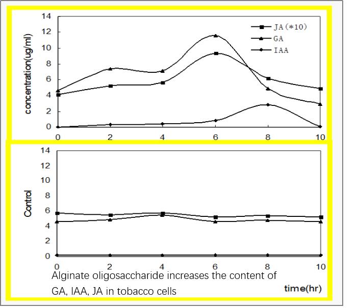 alginate oligosaccharides to activate immune system