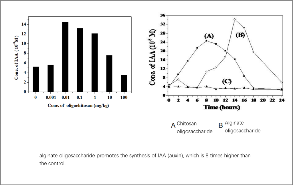 Alginate oligosaccharide significantly promotes plant rooting and germination.